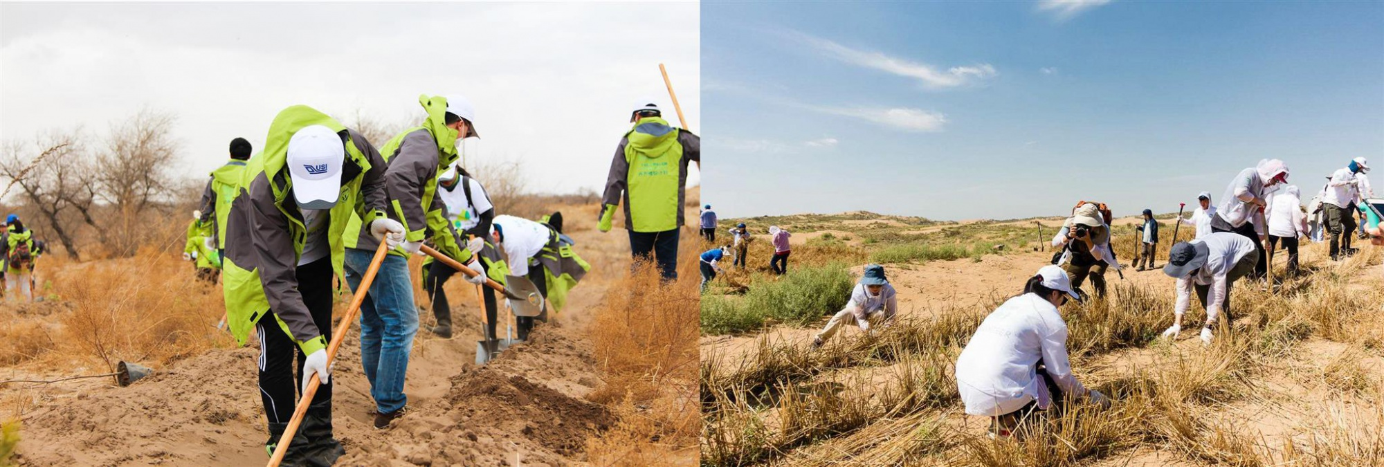 USI Planted 20,000 Trees in Inner Mongolia and Ningxia to Combat Desertification